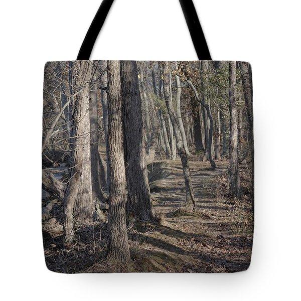 Pumpkin Ash Trail Tote Bag