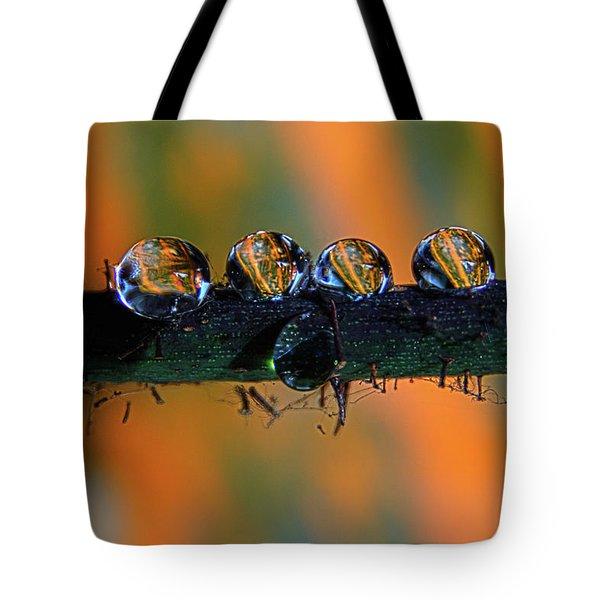 Pumpkin Drops Tote Bag
