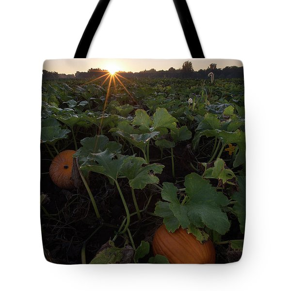 Tote Bag featuring the photograph Pumpkin Patch by Aaron J Groen
