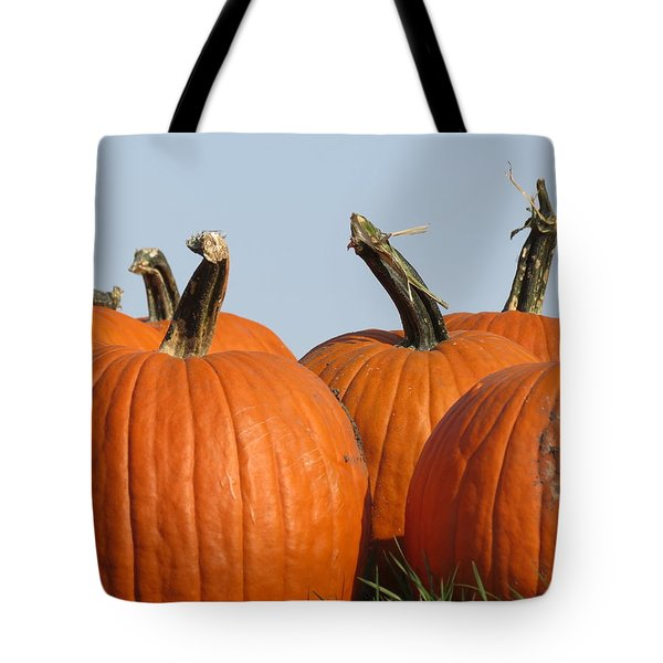 Pumpkin Patch II Tote Bag by Kyle West