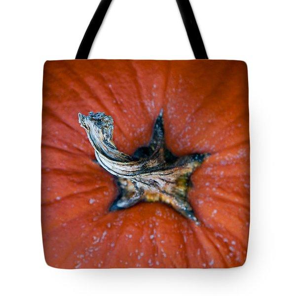 Pumpkin Stalk Tote Bag