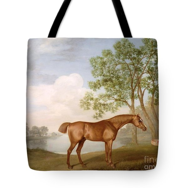Pumpkin With A Stable-lad Tote Bag by George Stubbs
