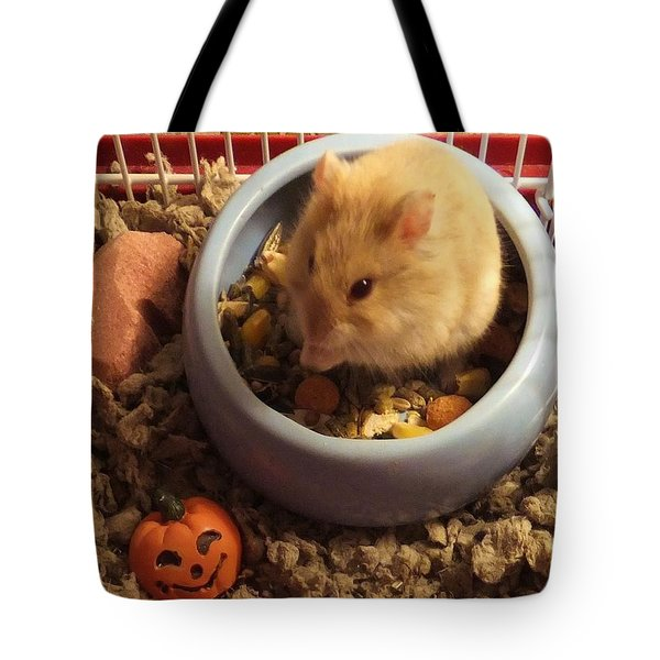 Pumpkin With Pumpkin Tote Bag