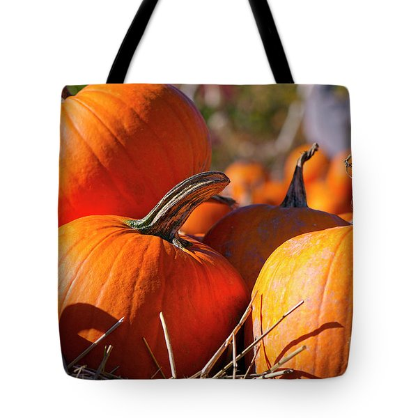 Tote Bag featuring the photograph Pumpkins 2 by Sharon Talson