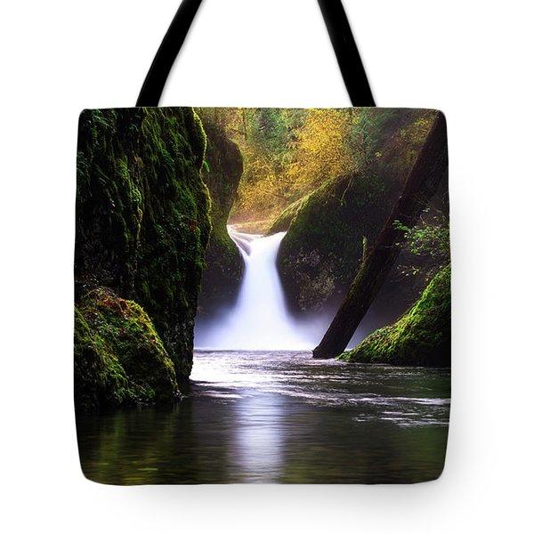 Punch Bowl  Tote Bag