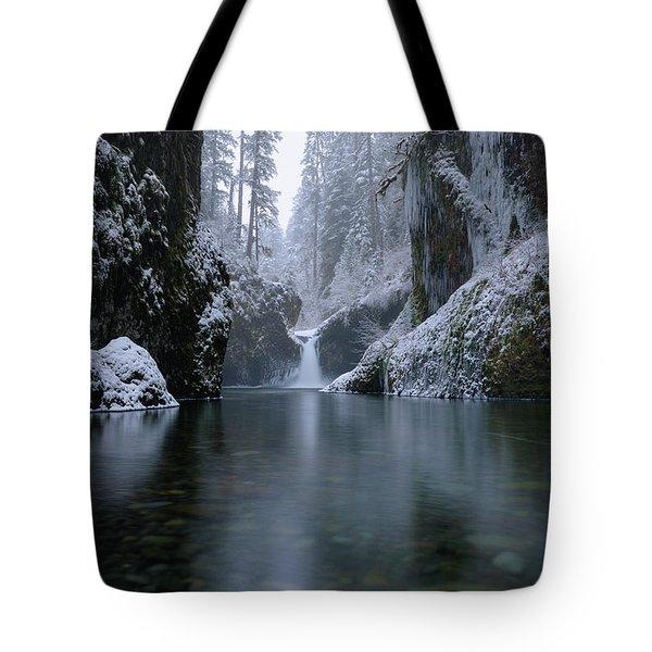 Punch Bowl Winter Tote Bag