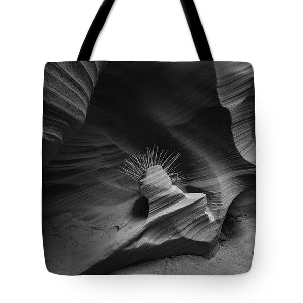 Tote Bag featuring the photograph Punk Rock by T A Davies
