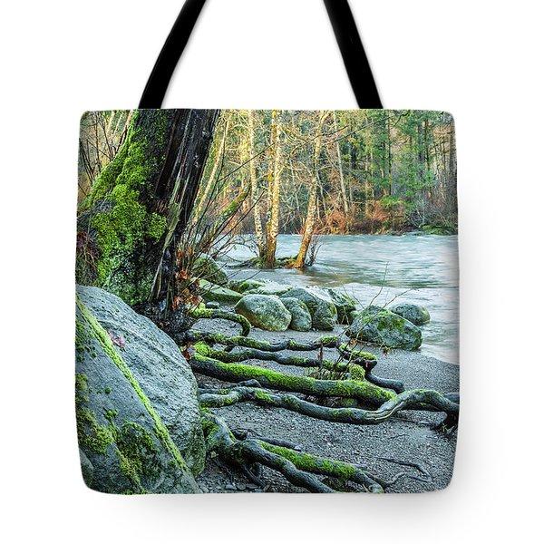 Puntledge Park-1 Tote Bag