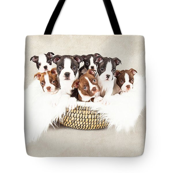 Puppies In A Basket With Textured Background  Tote Bag