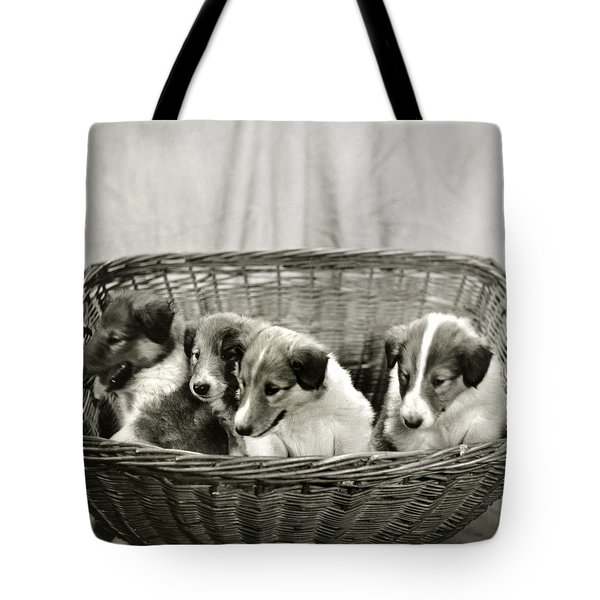 Puppies Of The Past Tote Bag by Marilyn Hunt