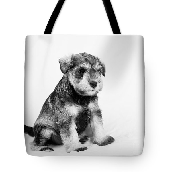 Puppy 2 Tote Bag by Serene Maisey