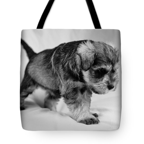Tote Bag featuring the photograph Puppy 4 by Serene Maisey