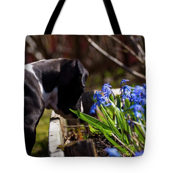 Puppy And Flowers Tote Bag by Tamara Sushko