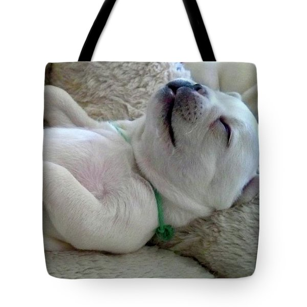 Puppy Dog Dreams Tote Bag by Russell Keating