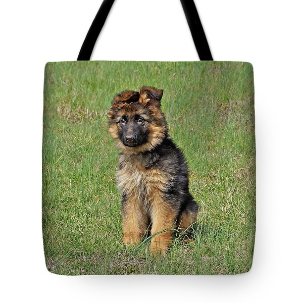 Tote Bag featuring the photograph Puppy Halo by Sandy Keeton