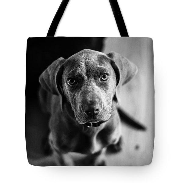 Puppy - Monochrome 1 Tote Bag