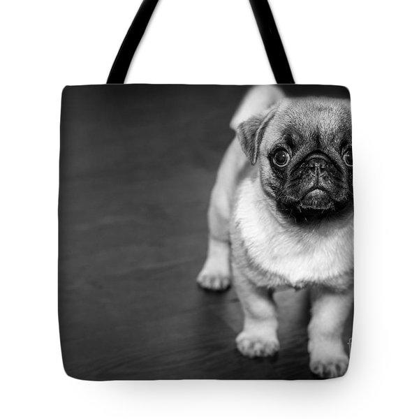Puppy - Monochrome 2 Tote Bag