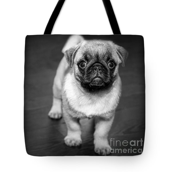 Puppy - Monochrome 2 Tote Bag
