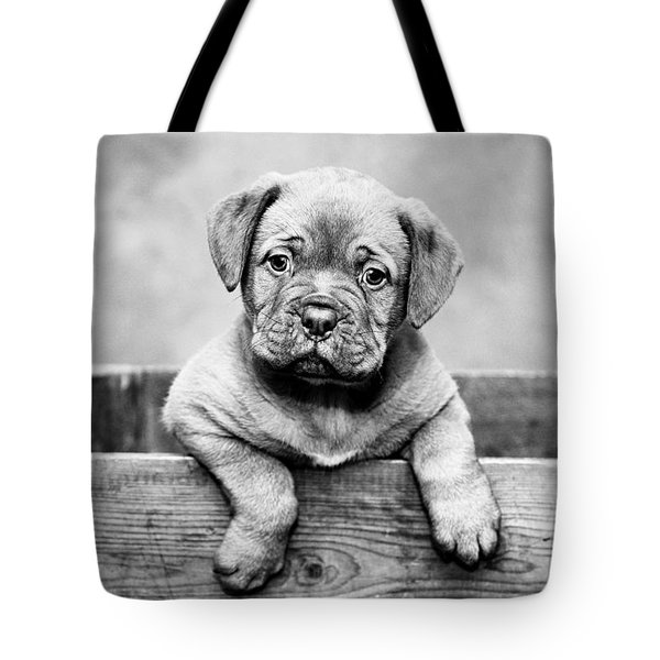 Puppy - Monochrome 3 Tote Bag