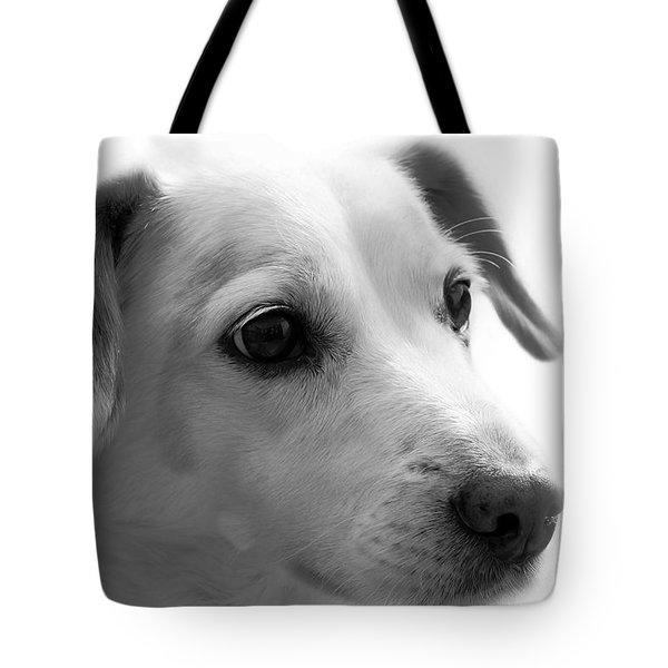 Puppy - Monochrome 4 Tote Bag