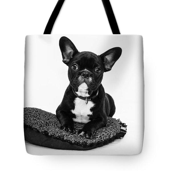 Puppy - Monochrome 5 Tote Bag