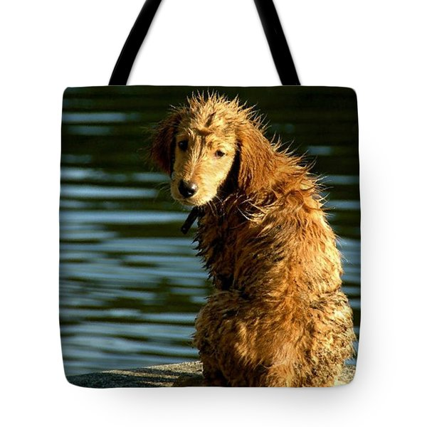 Puppy On The Pier Tote Bag