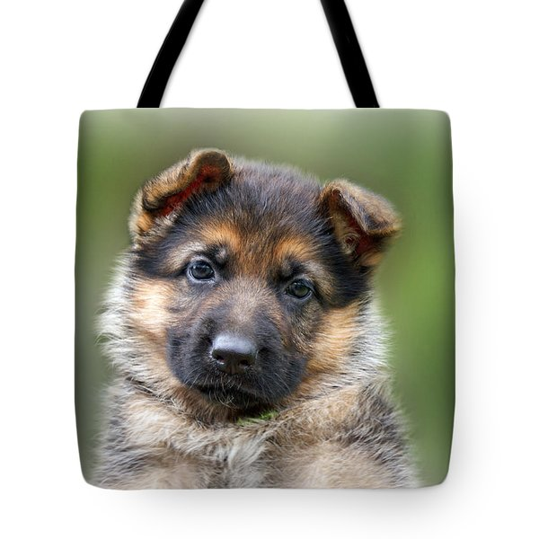Puppy Portrait Tote Bag by Sandy Keeton