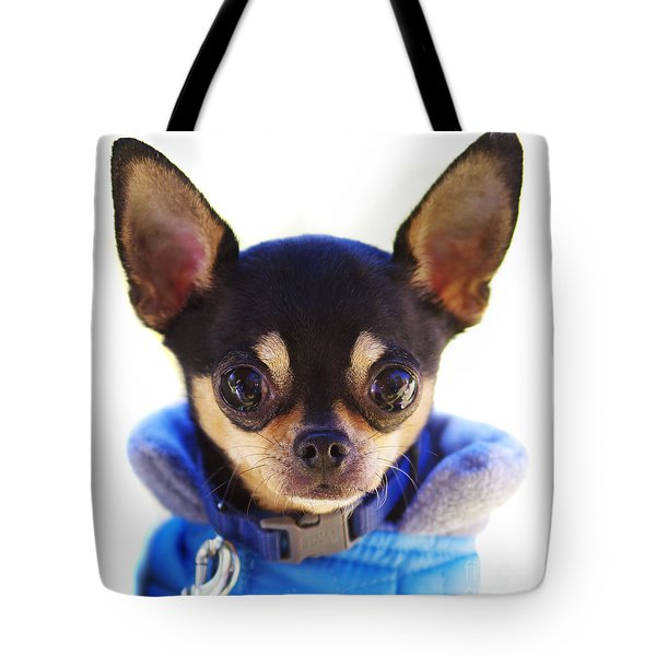Tote Bag featuring the photograph Puppy Power by Gregg Cestaro