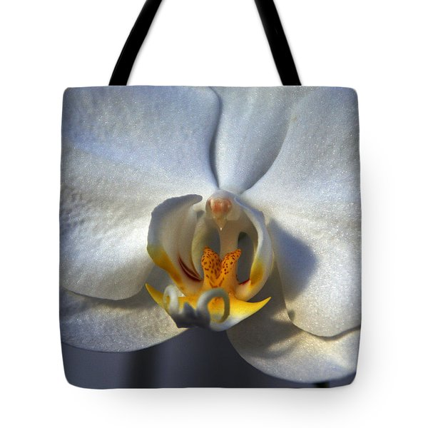 Tote Bag featuring the photograph Pure Form And Color by Lynda Lehmann