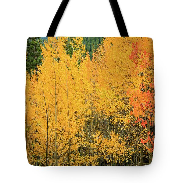 Tote Bag featuring the photograph Pure Gold by David Chandler