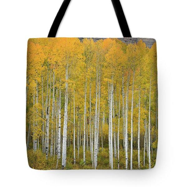 Purgatory Aspen Grove Tote Bag