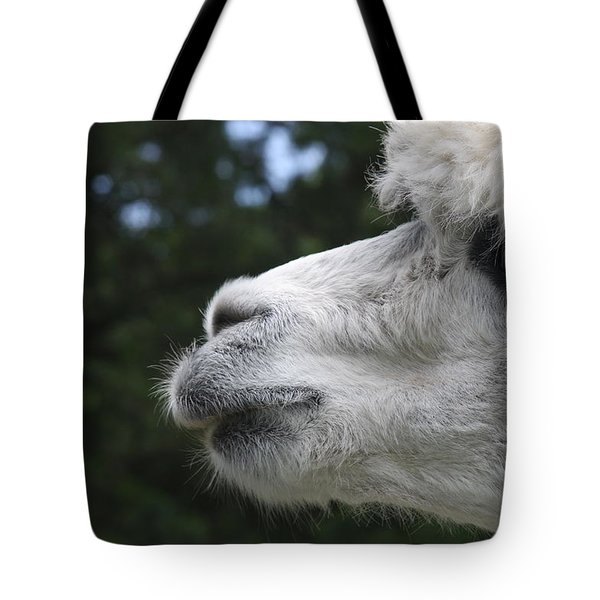 Purity Tote Bag by Vadim Levin