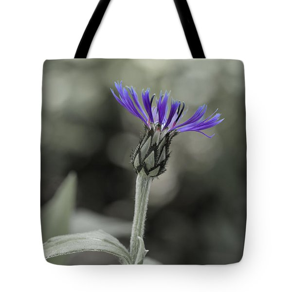 Purple And Grey Tote Bag