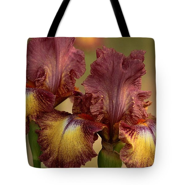 Tote Bag featuring the photograph Purple And Yellow Bearded Iris by Sheila Brown