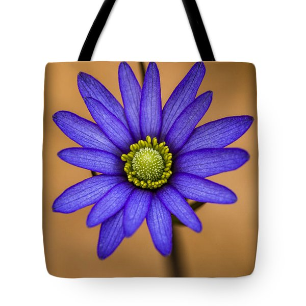 Purple Anemone Tote Bag