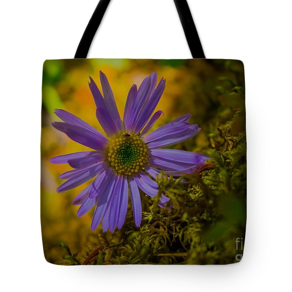 Purple Aster On Forest Floor Tote Bag
