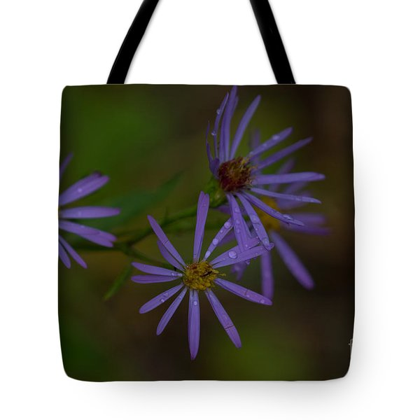 Purple Asters After A Summer Rain Tote Bag