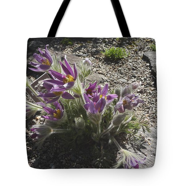 Purple Blossoms  In A Rock Garden Tote Bag