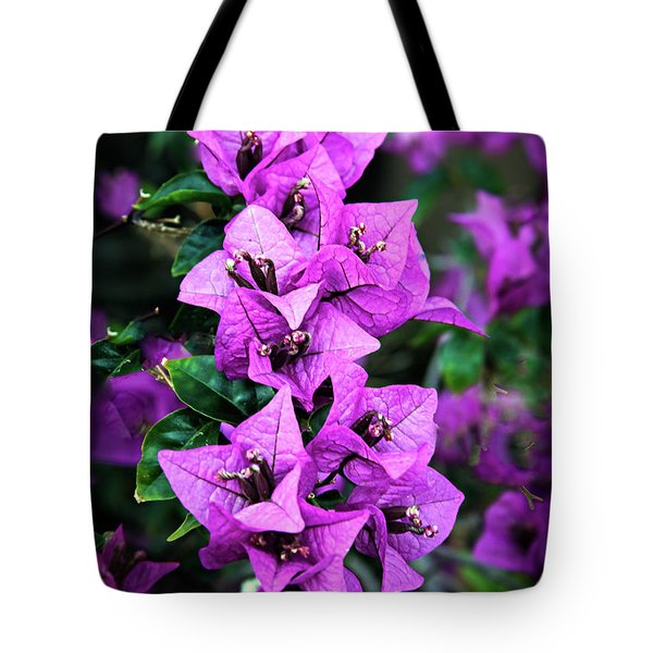 Tote Bag featuring the photograph Purple Bougainvillea by Robert Bales