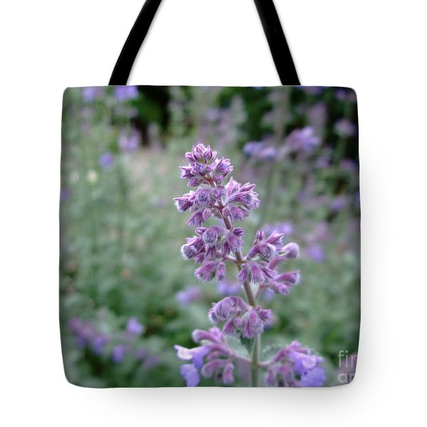 Purple Cat Mint Tote Bag
