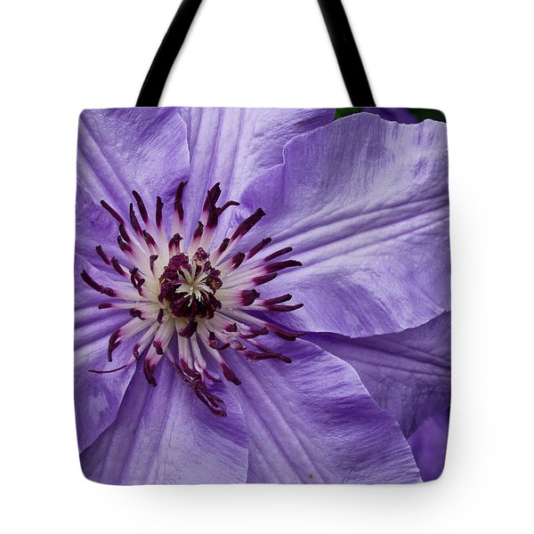 Purple Clematis Blossom Tote Bag