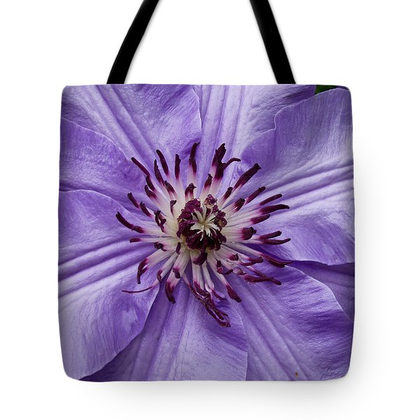Tote Bag featuring the photograph Purple Clematis Blossom by Louis Dallara