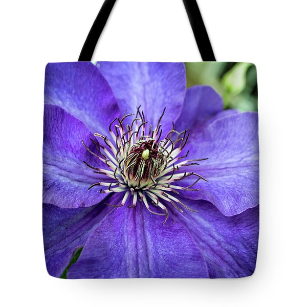 Purple Clematis Tote Bag by Chrystal Mimbs