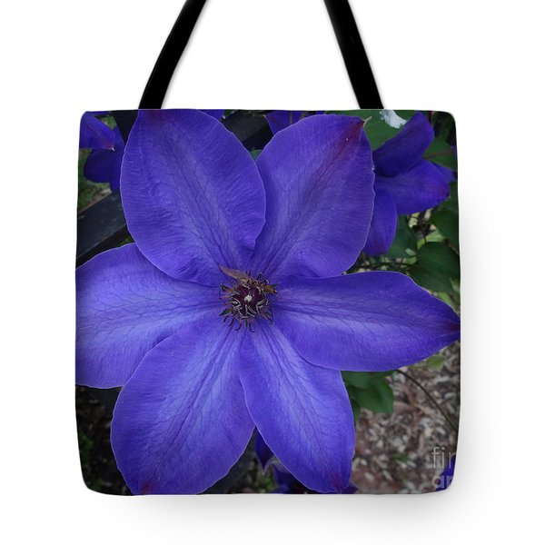 Tote Bag featuring the photograph Purple Clematis by Rod Ismay