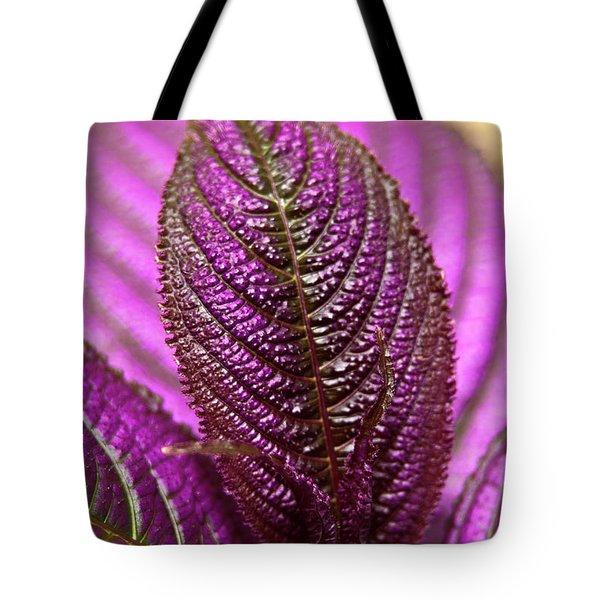 Purple Coleus Tote Bag by Carolyn Marshall