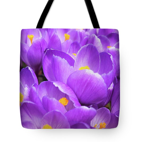 Purple Crocuses Tote Bag