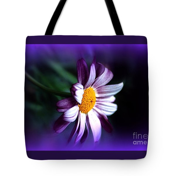 Tote Bag featuring the photograph Purple Daisy Flower by Susanne Van Hulst