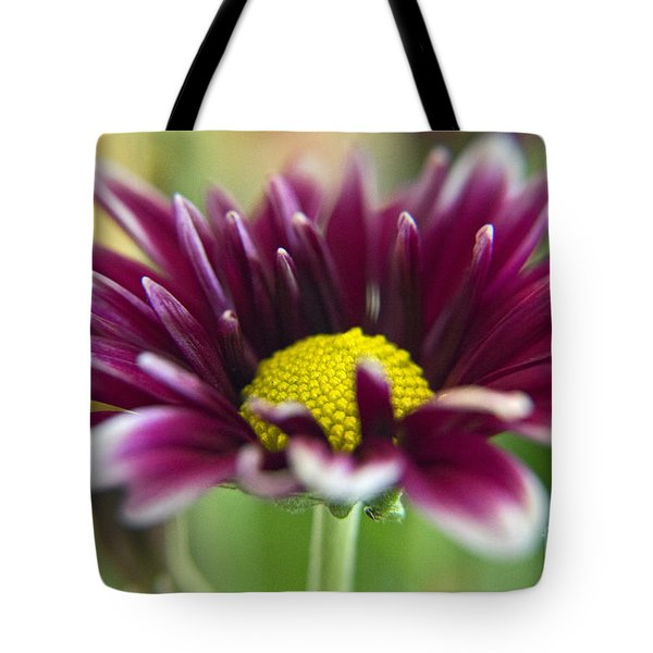 Purple Daisy Tote Bag