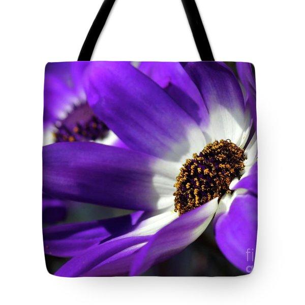 Purple Daisy Tote Bag by Sabrina L Ryan
