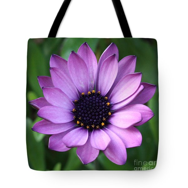 Purple Daisy Square Tote Bag by Carol Groenen